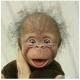 LARYSAY's avatar