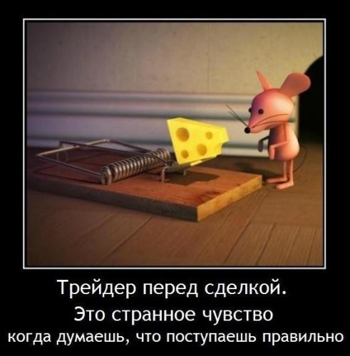 image191.jpg