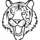 tigerrr's avatar