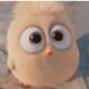 Lulubird's avatar