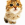 dinidumr avatar