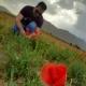 morteza1's avatar