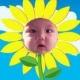 popopo's avatar