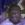 Icarus102 avatar
