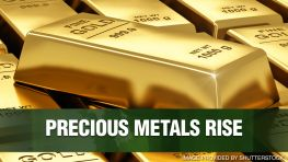 Precious Metals Hike