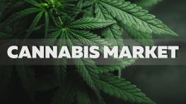 Cannabis The New World Market