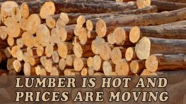 Lumber – Really? Yes!