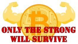 Only The Strong Will Survive